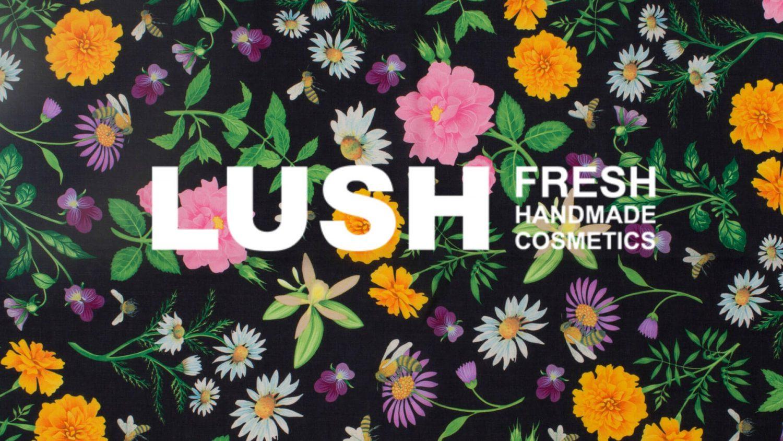 Mi opinión sobre LUSH y sus productos